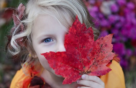 Girl smiling behind a large red leaf