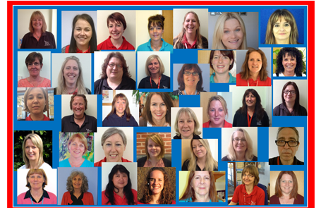 Meet the Torridge Team